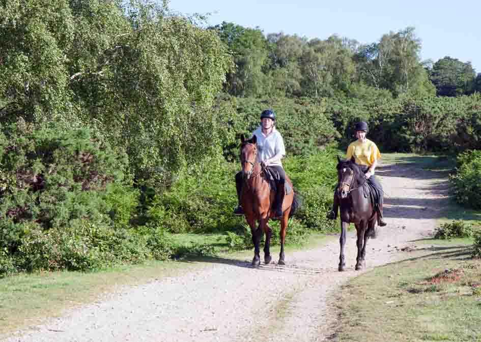 horse riding mini 1