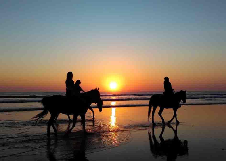 horse riding mini 2