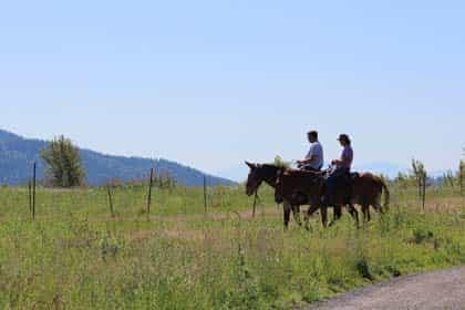 horse riding-01