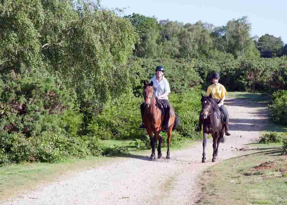 horse_riding_mini1