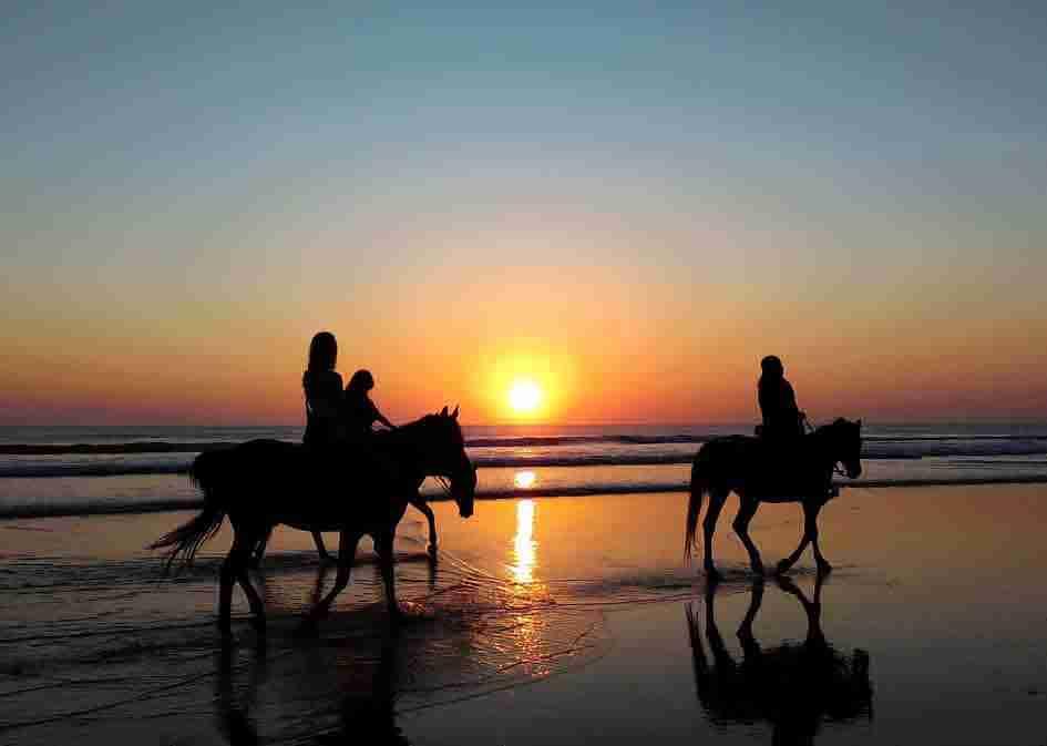 horse_riding_mini2