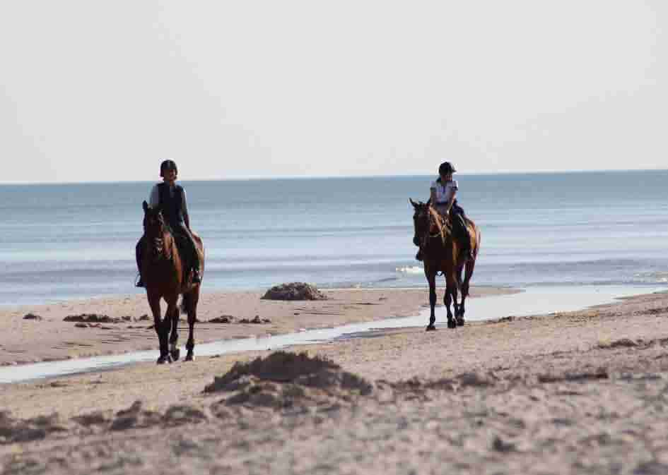 horse_riding_mini3