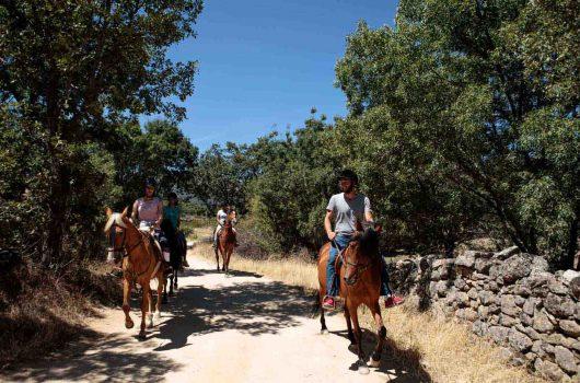 horseriding0002